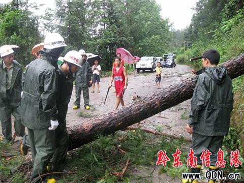 施秉/本港讯(刘毅/摄吴如雄/文) 6月21日拍摄,消防队员在清理被狂风...