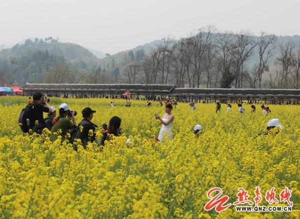旅游 景区 > 正文    游客摄影留念   从2005年开始,贵定县已成功举办