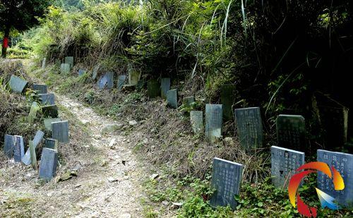 在榕江县朗洞镇棉花坳岔路口见到的指路碑碑石林立