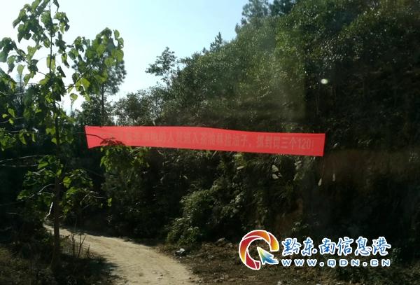 图为从江县庆云镇油茶基地警示标语(张跃飞 摄)
