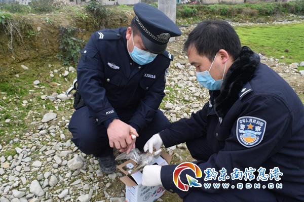 警民處置2起野生動物(wu)舉報線索