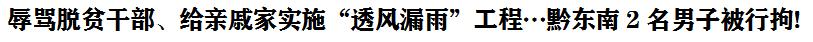 """辱罵脫(tuo)貧干(gan)部、給親戚家實施""""透風漏雨""""工(gong)程…黔(qian)東南2名男子被行拘!"""
