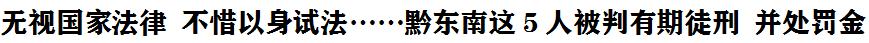 無視國家法律 不(bu)惜以身試法……黔東南這5人(ren)被(bei)判有期徒(tu)刑 並處(chu)罰金(jin)