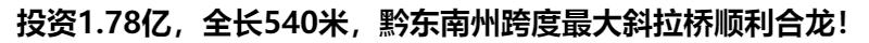 投資1.78億,全長(chang)540米,黔(qian)東(dong)南xian)zhou)跨度(du)最大斜拉橋順利合(he)龍!