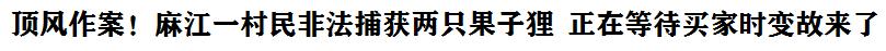 頂風(feng)作案fu)÷榻jiang)一村民非法(fa)捕獲兩只果(guo)子狸 正在等待(dai)買(mai)家(jia)時變故來了(liao)