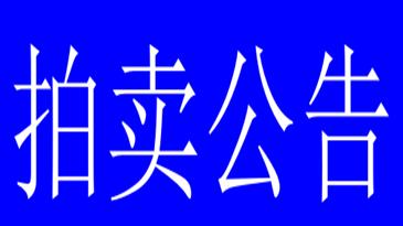 雷山縣(xian)退役公務用車車輛拍賣公告