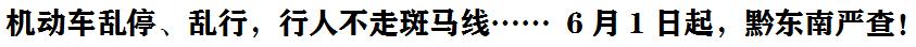 機動車亂停、亂行,行人不走斑(ban)馬線…… 6月1日起,黔東(dong)南嚴查!